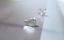 Zarcillos De Hojas De Pájaro Pendientes De Plata Cepillada Mujeres Niños Niña Joyeria Regalo