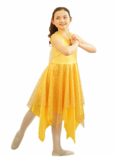 World Book Day//Dance Shows//Cinders//Belle FAIRY PRINCESS DRESS All Ages//Colours