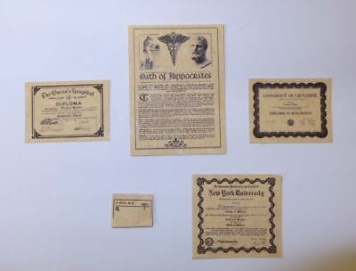 Miniature MEDICAL OFFICE DOCUMENTS Dollhouse 1:12 Scale DOCTOR NURSE ANATOMY
