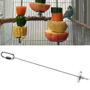 Premium-LARGE-Parrot-Fruit-Skewer-Stainless-Steel-Bird-Treat-Spear-Feeder