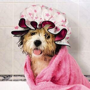Birthday-Card-Blank-034-Dog-Bath-Time-034-6-25-034-x-6-25-034-Q03-39378