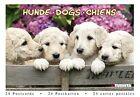 Dogs 9783863233648 Tushita Verlags GmbH 2013 Postcard