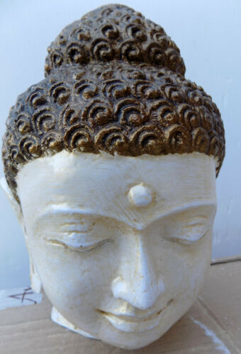 Head of Buddha resin coloured 20x18x26 shiva ethnic Buddha Ganesh divinity 3