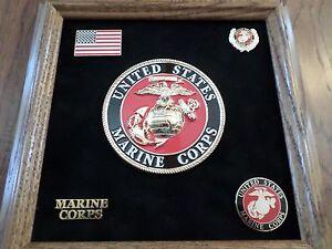 U-S-MILITARY-MARINE-CORPS-MEDALLION-WITH-PINS-PRESENTATION-SHADOW-BOX-OAK-FRAME