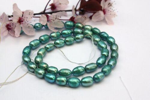 OV189 Zuchtperlen Strang Süßwasser Perle Schmuck Kette Halskette 5-6 mm Oval