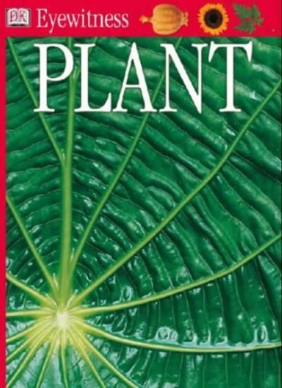 Plant (Eyewitness) By DK