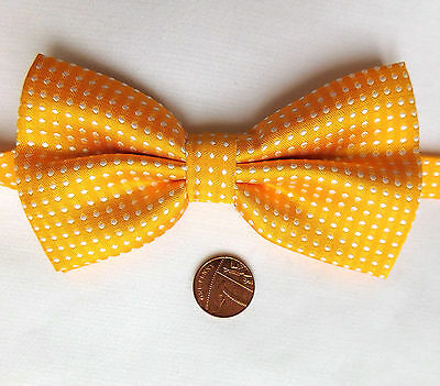 Gold polka dot bow tie white spots Collar size 11 to 20 inches