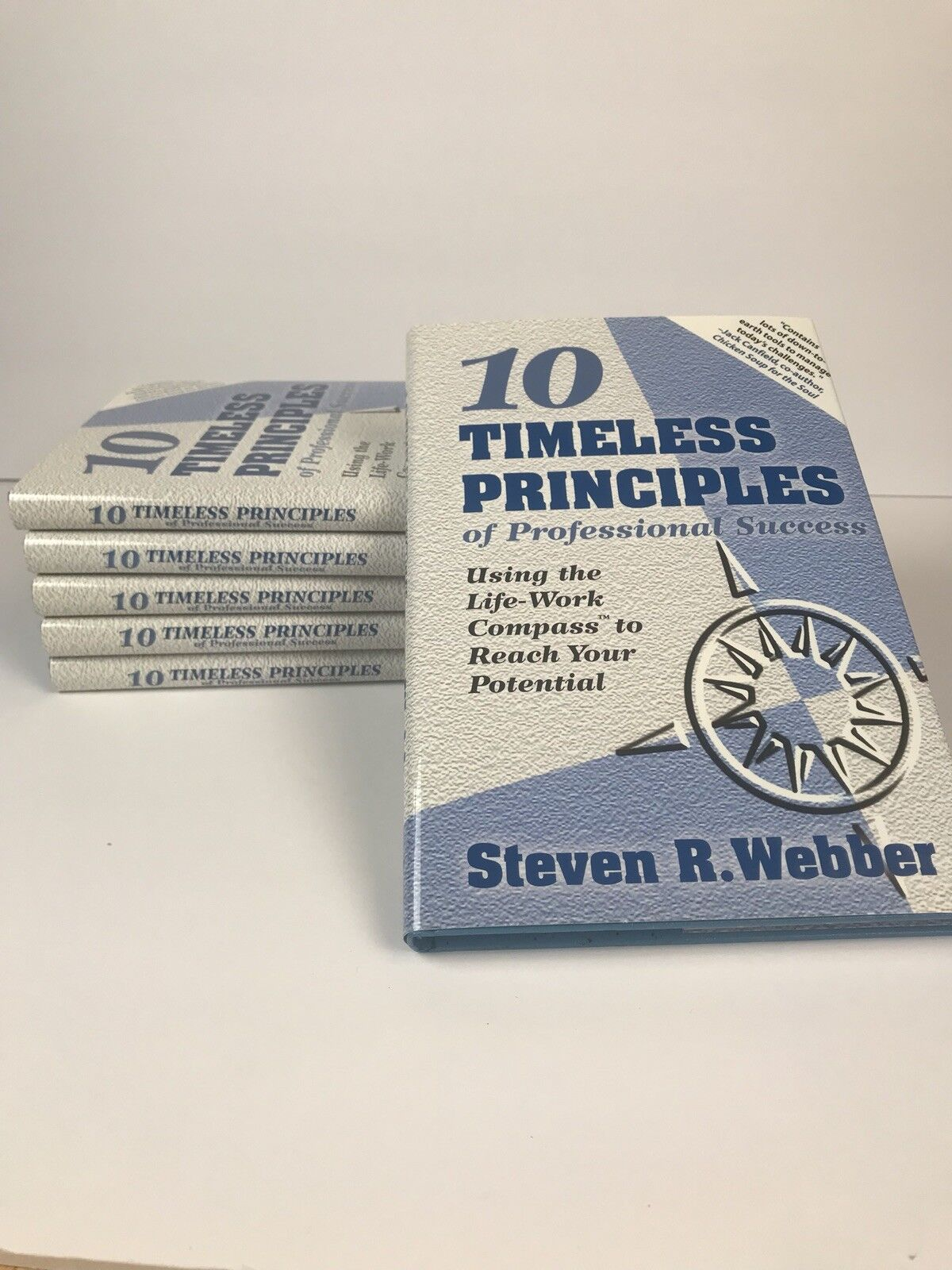 The 10 Timeless Principles of Professional Success : Using the Career  Compass to Navigate Your Way in Life and Reach Your Potential at Work by Steve  Webber ...