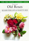 Traditional Old Roses by Roger Phillips, Martyn Rix (Paperback, 1998)