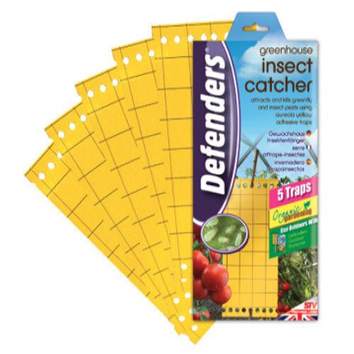 Stv insectes receveur 5 pièce flieggenfänger adhésive piège leimfalle insectes piège