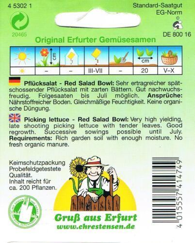 Eichenlaubsalat /'Red salad bowl/'  Pflücksalat Salat Saatgut 453021