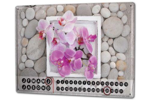 Dauer Wand Kalender Pflanzen  Orchidee Metall Magnet