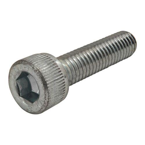 80//20 Inc M6 x 25mm Socket Head Cap Screw #3807 N 4 PK