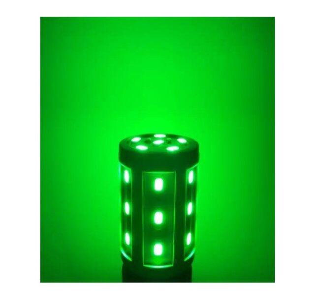 The Green Hornet Night Light 480 Lumens LED BRIGHT Plant Safe