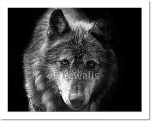 Wolf Art Print Home Decor Wall Art Poster C