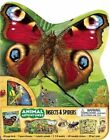 Animal Adventures: Insects & Spiders by Lori C Froeb (Mixed media product, 2014)