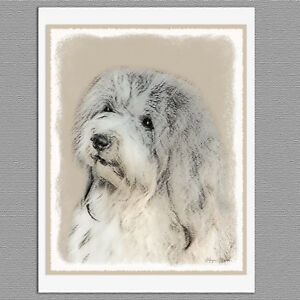 Havanese Collectible 4 x 6 Dog Pop Art Print Signed by Artist KSams Dog HoardsTP