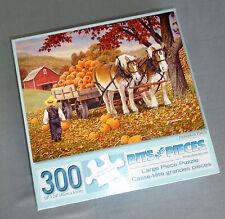 Bits And Pieces Jigsaw Puzzle Pumpkin Patch 300 Pieces