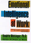 Emotional Intelligence at Work: The Untapped Edge of Success by Hendrie Weisinger (Paperback, 2000)