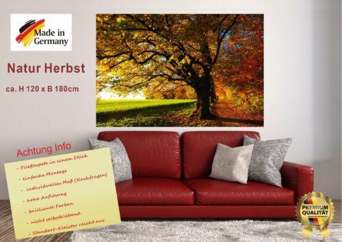 "Wandbild Fototapete /""Herbst/"" Poster XXL Tapete Vlies WA8"