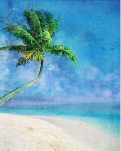 KEN-Roko-Palm-Beach-and-ESTRELLA-DE-MAR-camilla-imagen-de-Pantalla-PALMAS