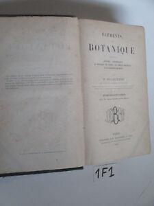 ELEMENTS-DE-BOTANIQUE-1F1