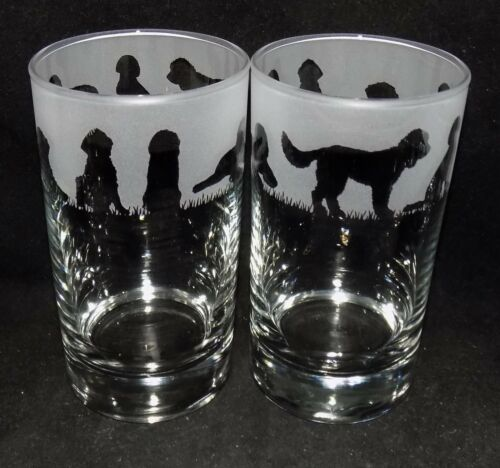 """Beautiful Gift Free Gift Box New Etched /""""LABRADOODLE/"""" Hiball Glasses"""