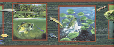 Bass Fishing Wallpaper Border With Names And Lures Lm7989b 34878881645 Ebay