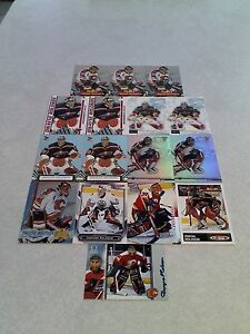 Dwayne-Roloson-Lot-of-16-cards-10-DIFFERENT-Hockey