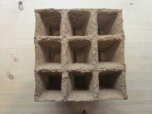 54 Godets pour semis 100/% BIO pots cellulose et tourbe fabrication Française