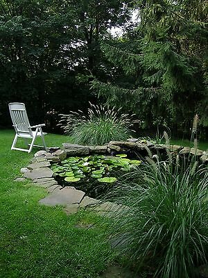 New Garden Pond Liner 1.9m Wide - Suitable for Fish - Plants - Water Feature