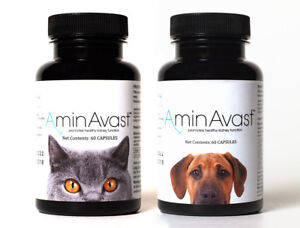 Aminavast Kidney Support For Cats Dogs 60 Capsules Brand