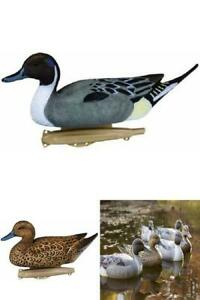 Flambeau-Pintail-Duck-Bird-Drake-Hen-Storm-Front-Decoys-Hunting-Floating-6-Pack