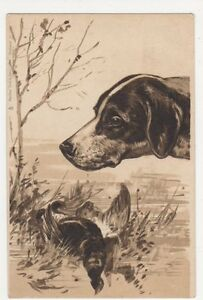 Hunting-Dogs-Pointer-Early-Tuck-3759-Embossed-Chromo-Postcard-B118