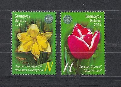 1193-94 Botanical Garden Hohe Belastbarkeit Natur & Pflanzen Kompetent Flowers Belarus Weissrussland Mnh** 2017 Mi Motive