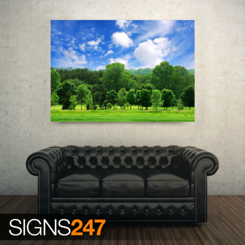 BEAUTIFUL SUMMER paysage AE057 Nature Poster-Poster print ART A0 A1 A2 A3