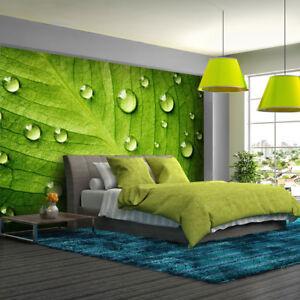 Details zu Fototapete Wände mit Blättern - Tapete Fototapeten Fürs  Schlafzimmer FDB128