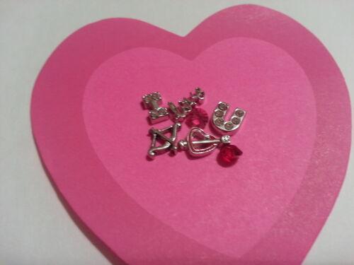 VALENTINE LOVE YOU CHARM LOT FOR LIVING MEMORY GLASS LOCKET FLOATING CHARMS #125