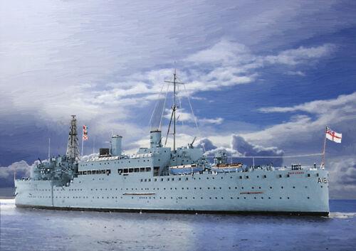25 HMS Maidstone-mano acabado Edición Limitada