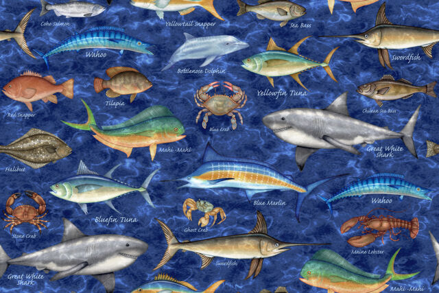 FABRIC Quilting Treasures ~ OCEAN OASIS ~ Dan Morris (25830 B) by 1/2 yd