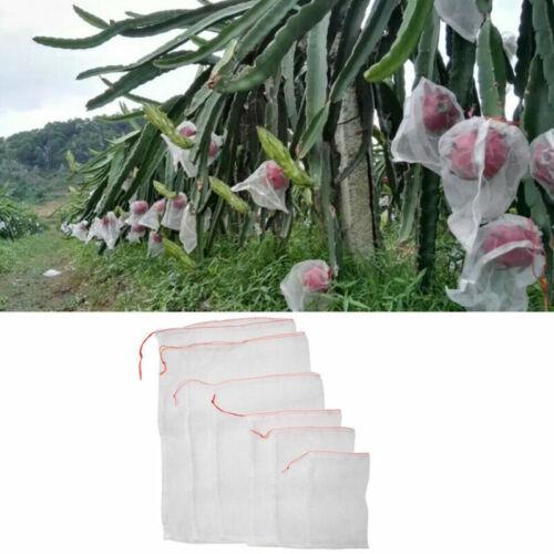 5 Sizes Garden Plant Fruit Protect Drawstring Net Bag Mesh Against Insect Pest