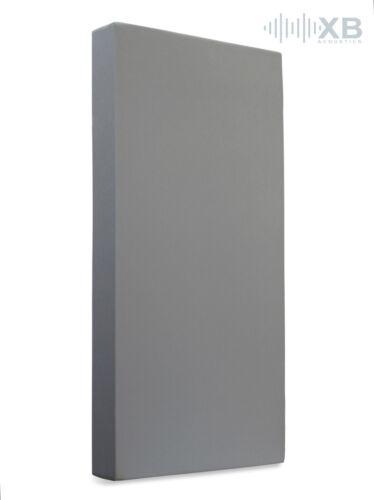 Schallabsorber aus Basotect® 100x50x12cm Tonstudio Grau