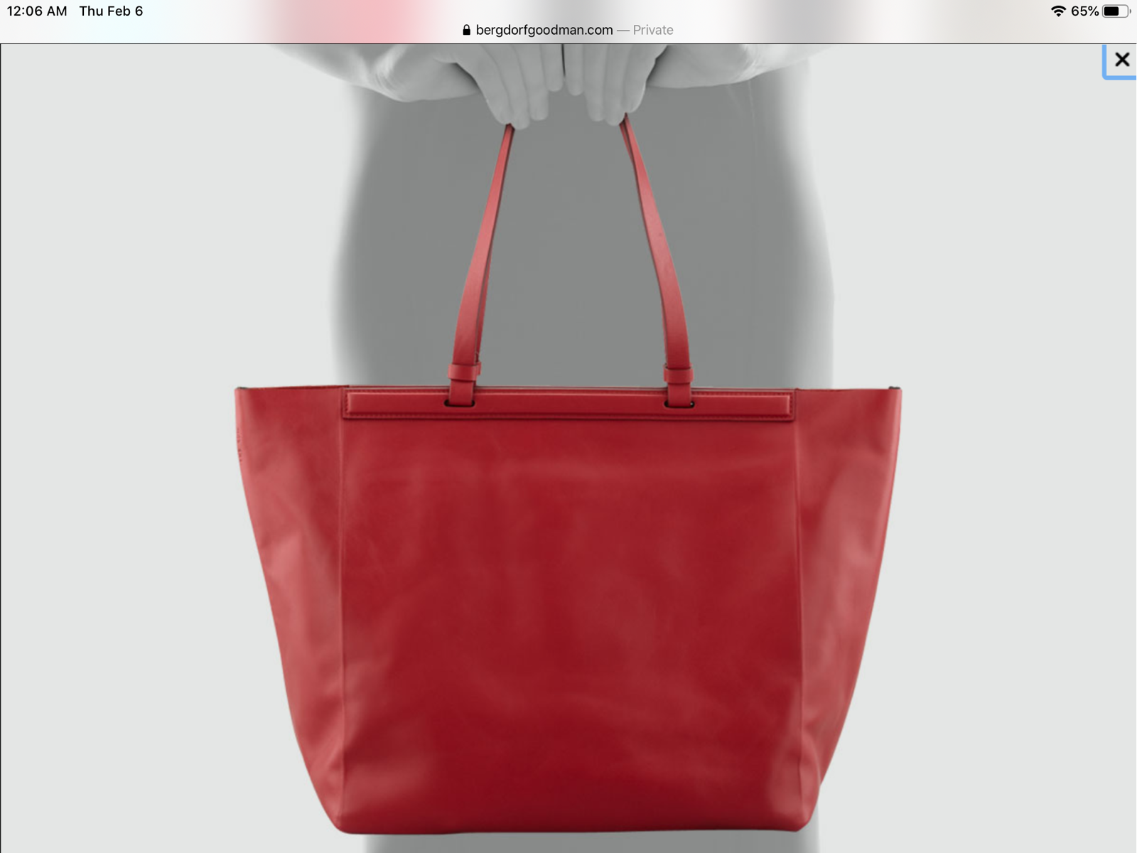 THE ROW The Shopper Calfskin Tote Bag Leather Ruby Red NWT Sold Out