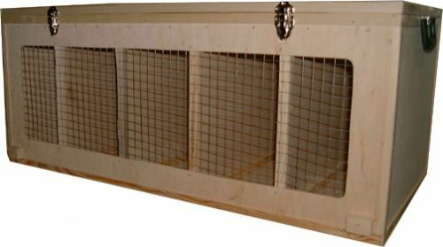 Cassa Trasportino cesta trasporto per medie dimensioni razze di pollo 01055