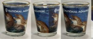 National-Aquarium-Critters-Shot-Glass-4727