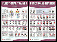 Functional Trainer Workout Professional Fitness Gym Wall Charts 2 Poster Set