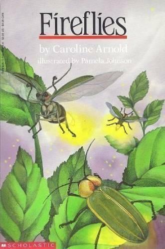 Fireflies - Paperback By Arnold, Caroline - GOOD