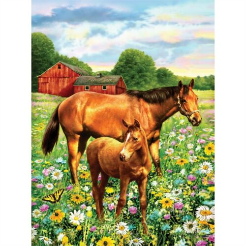 """Junior Small Paint By Number Kit 8.75/""""x11.75/""""-horse In Field"""