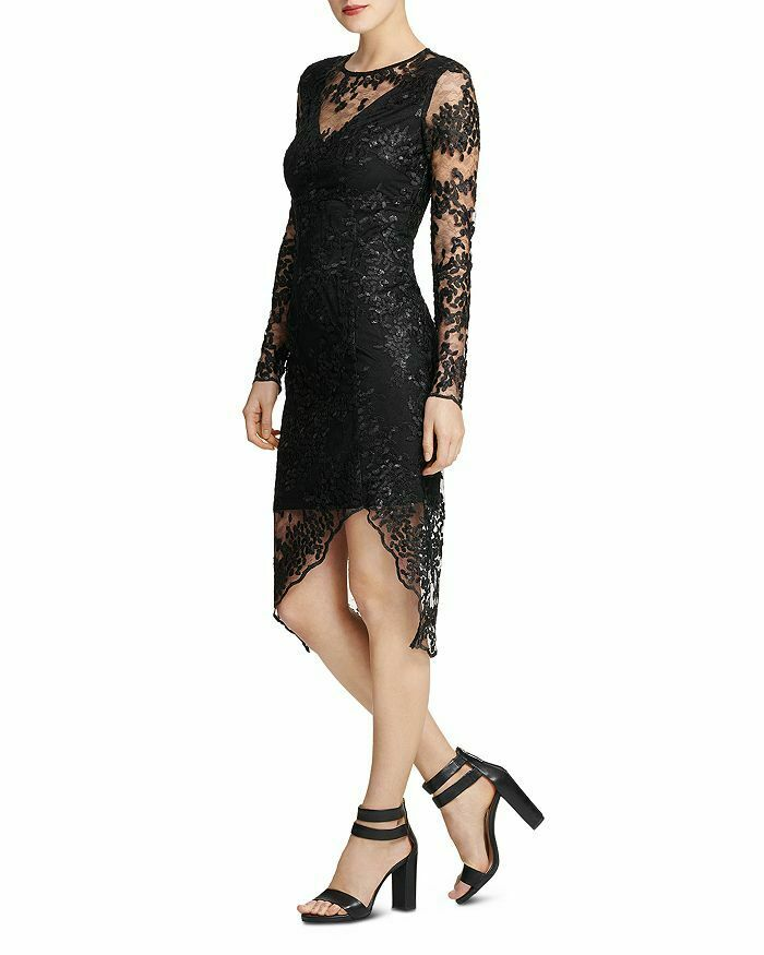 damen Karan Embroiderot Lace Illusion Sheath Dress Größe 4  D499 MSRP