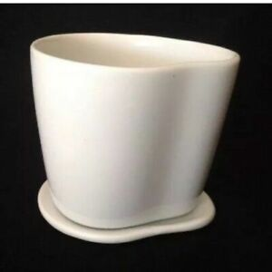 Starbucks Coffee Company Organic by Aida White 8oz Mug Cup with Lid Saucer